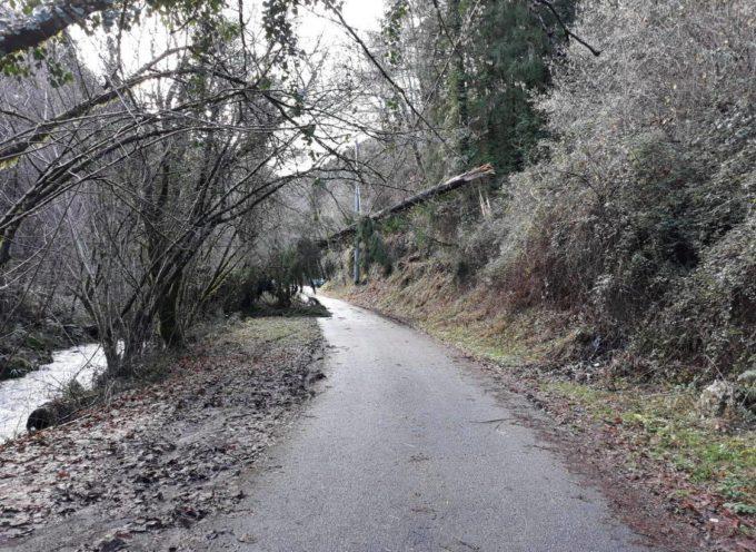 Prima Pescaglia: interpellanza per la manutenzione della rete stradale