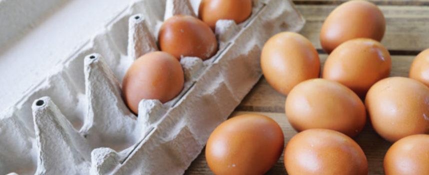 Rischio microbiologico, si allarga il richiamo delle uova.