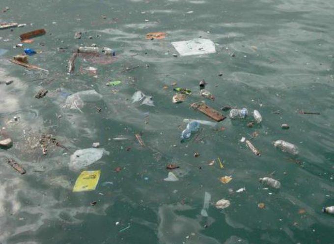 """I rischi di un mare sempre più """"plastificato"""""""