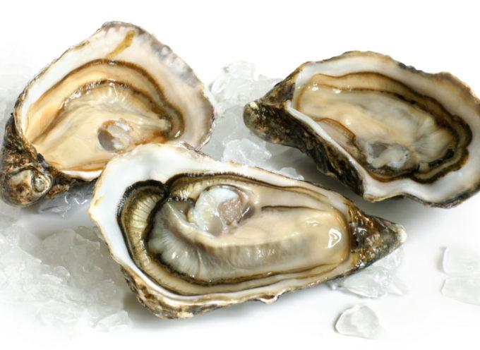 richiamo di ostriche Bretagne Creuses spéciale