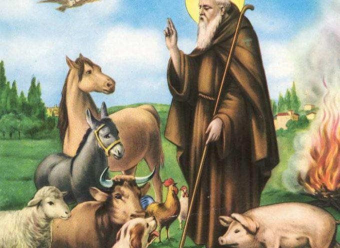 SERAVEZZA – Benedizione degli Animali: appuntamento domattina in via Alpi Apuane