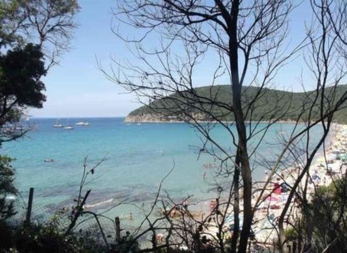 Cala Violina, una filiale di Paradiso sulla costa toscana