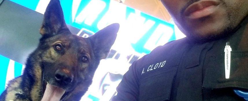 Una donna fotografa un agente mentre si scatta degli adorabili selfie insieme al suo cane poliziotto
