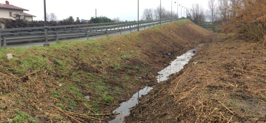 degrado e sicurezza, comune pulisce terreni del Portone, via Puglie e via Martini di Cefalonia