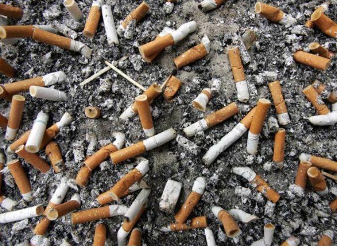 A Capannori i mozziconi di sigaretta diventano terriccio per vivaisti