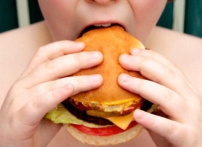 L'obesità non aiuta il clima