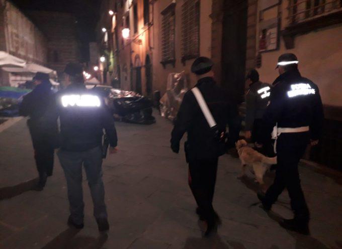 Droga e superalcolici; sanzionati 14 giovani in centro storico a Lucca.