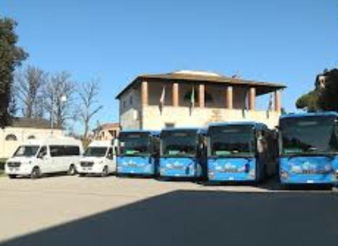 Sei nuovi bus per il trasporto extraurbano