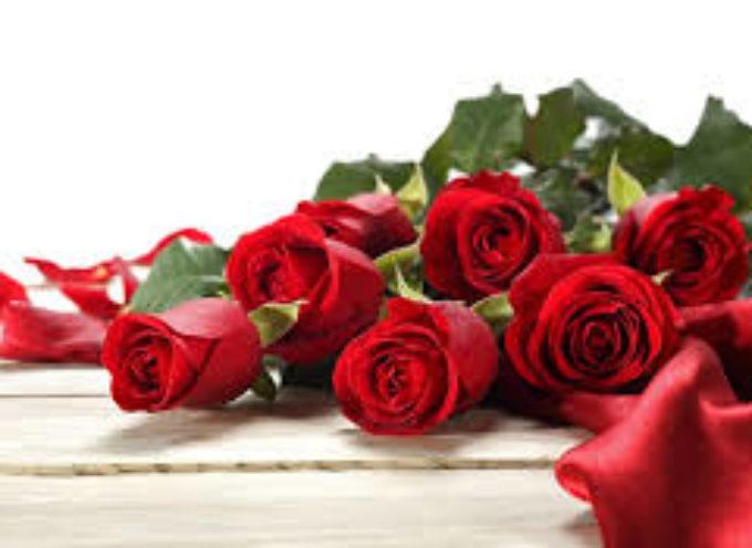 Rose rosse per San Valentino.