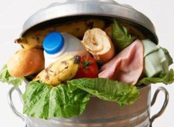 Da Pescia arriva un importante provvedimento contro gli sprechi alimentari