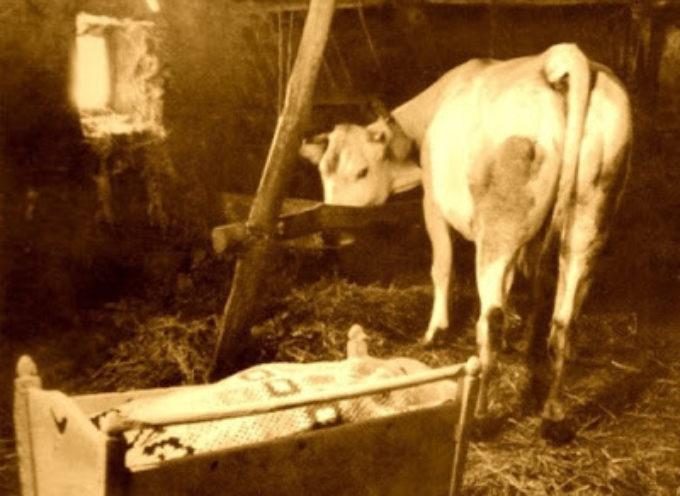 Leggende, segreti e benedizioni. Quando gli animali erano veramente importanti in Garfagnana