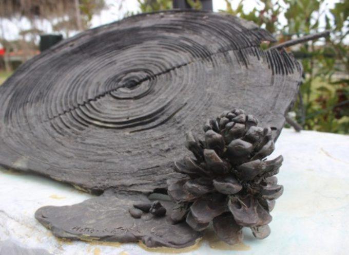 Pietrasanta – 5 marzo: cinque anni fa la tempesta, un nuovo albero per la giornata del ricordo