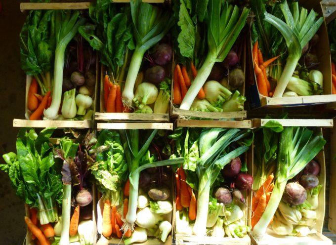 Domani noi contadini locali biologici saremo presenti in Piazza di San Francesco con i prodotti alimentari della nostra terra