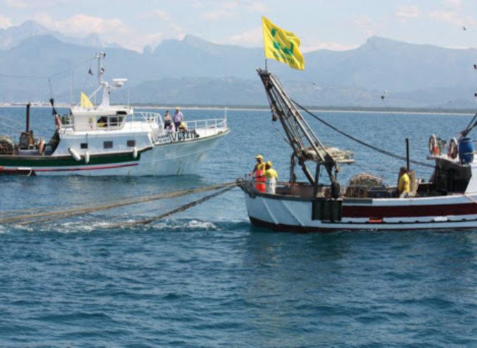 Crolla la pesca, a Viaregio 90 equipaggi in crisi
