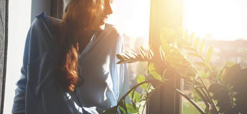 Luce solare: come l'illuminazione naturale uccide i batteri che abbiamo in casa