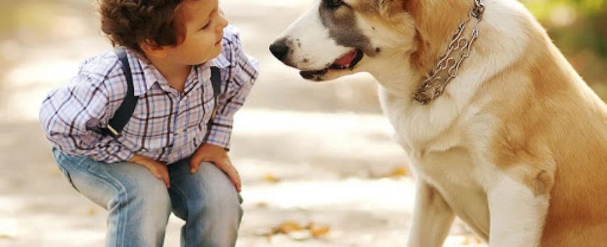 """Un bimbo di 2 anni """"parla"""" con il suo amico cane dando vita a una scena a dir poco esilarante"""