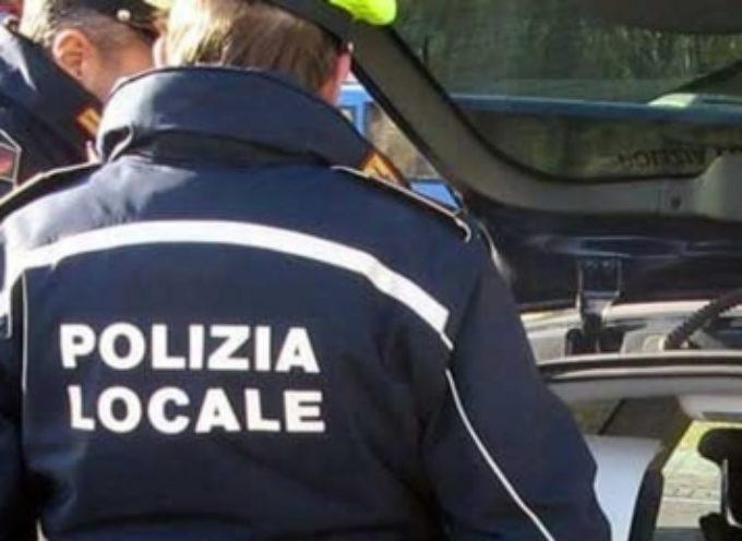 capannori – sta lavorando per far partire entro l'estate il nuovo servizio del 'Vigile di zona'