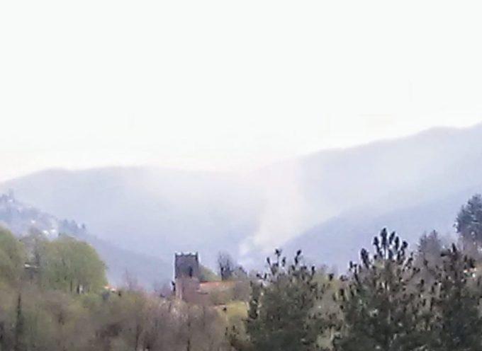 un altro incendio che devasta il monte alle spalle di Crasciana