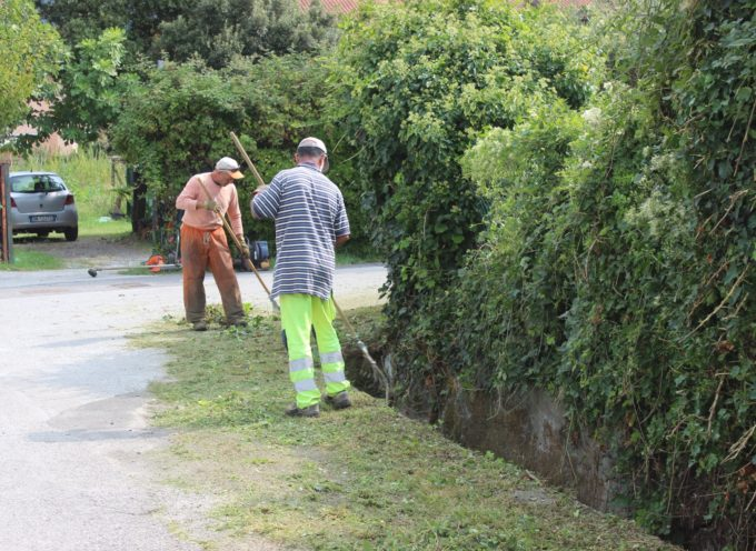 giardinieri devono conferire sfalci ad impianto in via Pontenuovo, l'indicazione del Comune di Pietrasanta