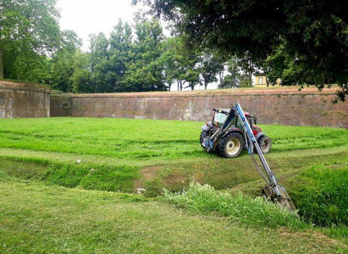 da lunedì, ripartiranno, grazie alla riapertura delle attività di cura del verde le operazioni di taglio dell'erba sulle Mura e sugli spalti della città.