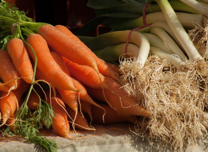 Massarosa – e' possibile coltivare l'orto