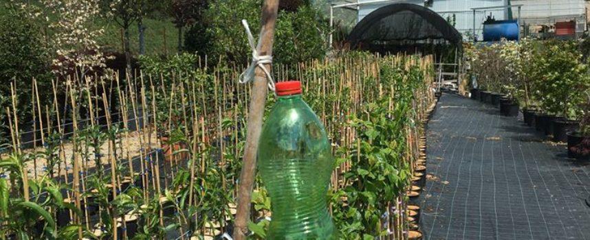 IVO POLI – Questo è il momento importante per iniziare la  lotta biologica
