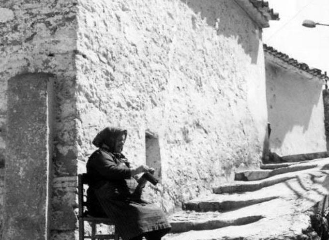 """"""" I vecchi hanno bisogno di affetto come del sole"""""""