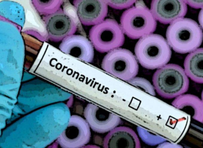Coronavirus: 452 nuovi casi[a lucca 24 ], età media 55 anni. 23 decessi
