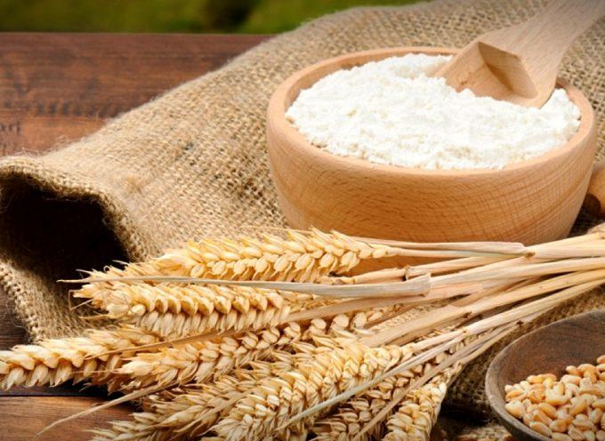 La farina va a ruba e il prezzo sale del 7%