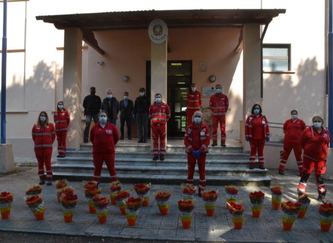 Regalo della Croce Rossa alla Polizia: 25 piante di begonie per dire grazie