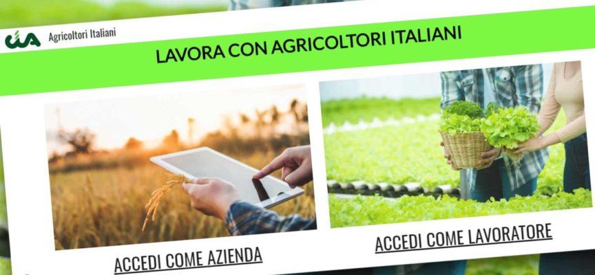 Lavorare in agricoltura. È online il portale Cia per la domanda-offerta di manodopera