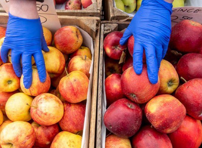 Imprese filiera agroalimentare e distributiva in prima linea a servizio del Paese