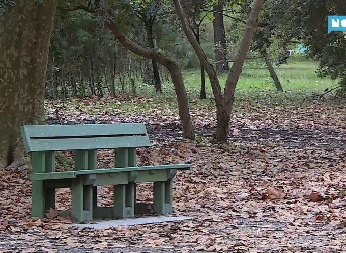 Stagione a rischio per giostre e chioschi delle pinete viareggine