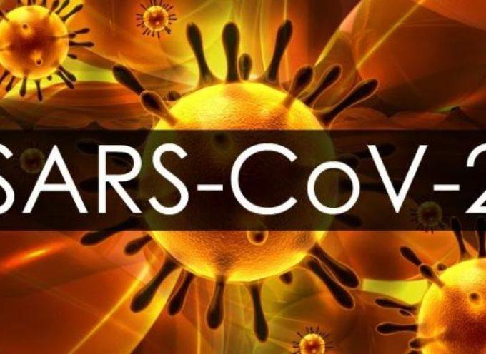 Coronavirus, per la prima volta in Toscana isolato a Siena il virus SARS-Cov2