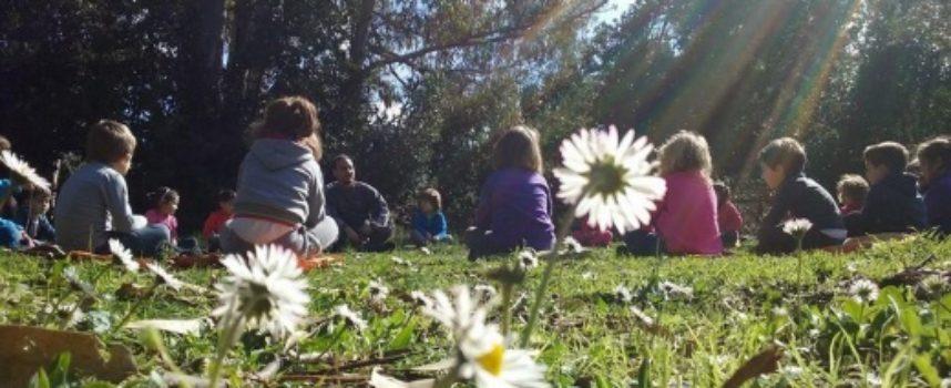 ultimo giorno di scuola tra i pini di D'Annunzio, Comune e Versiliana mettono a disposizione spazio all'aperto del Teatro dei Piccoli per lezioni in sicurezza