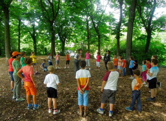 Realtà associative e parrocchiali cercasi per organizzare i centri estivi con i bambini e i ragazzi altopascesi.