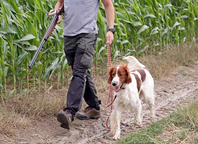 Toscana: controllo fauna selvatica e caccia di selezione, le modalità per l'attività in sicurezza