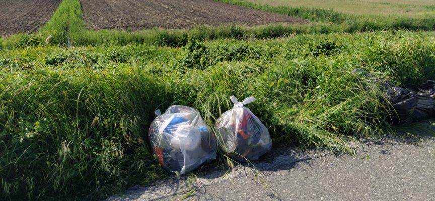 Ufficio ambiente e volontari ripuliscono alcune discariche abusive
