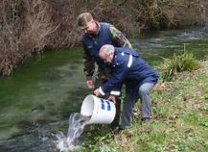 Ripopolamento dei corsi d'acqua DELLA VALLE DEL SERCHIO