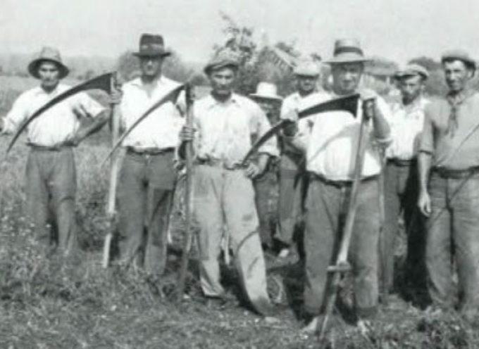 La squadra dei tagliatori di fieno.