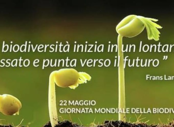 La giornata mondiale della biodiversità