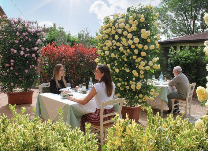 """Estate in fase 2, da Pistoia arrivano i """"distanziatori verdi"""": piante fiorite"""