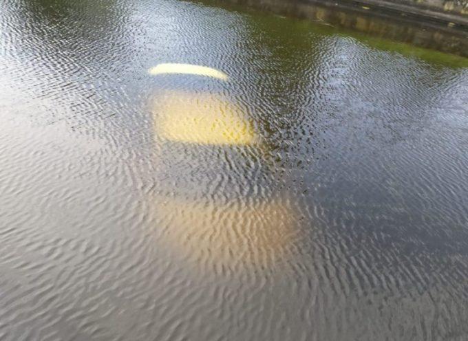 Finisce con l'auto nel canale Burlamacca: illeso il conducente