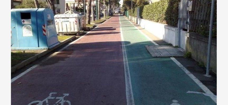 Toscana Carbon Neutral, un bando da 5 milioni di euro per nuovi alberi e piste ciclabili