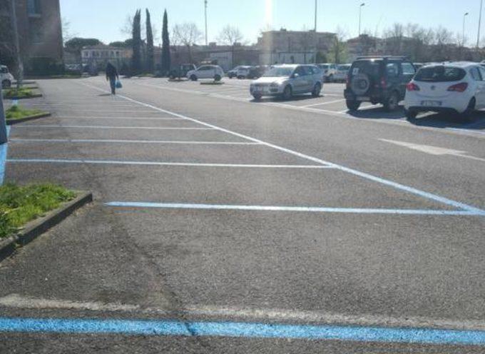 """Marchini a Confcommercio: """"I dati confermano che i parcheggi a pagamento sono vuoti"""