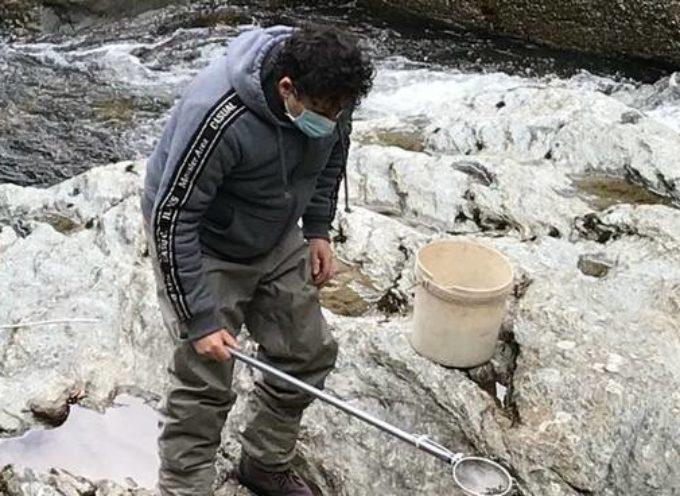 Ripopolamento dei corsi d'acqua in Valle del Serchio