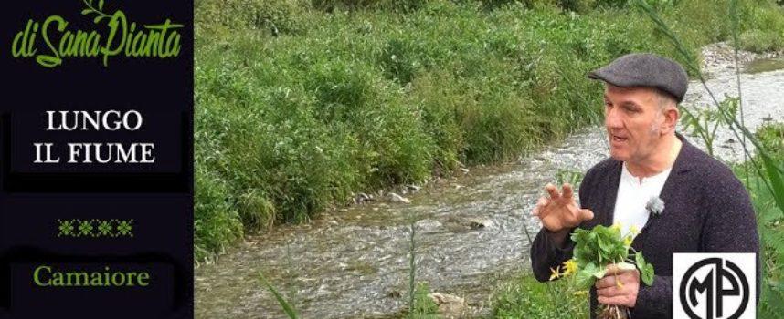 MARCO PARDINI – Lungo il fiume a Camaiore