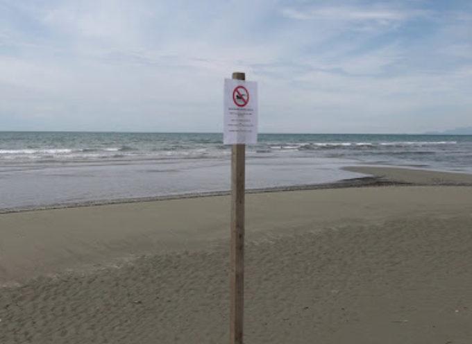 Divieto di balneazione alle foci di Lido di Camaiore e Fiumetto