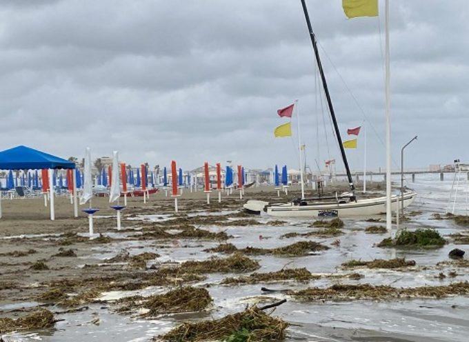 Versilia, Marchetti (FI): «Spiagge invase dagli sfalci non rimossi.