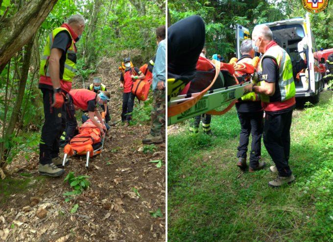 Questa mattina la stazione di Querceta è stata attivata per soccorrere una cercatrice di funghi che si è infortunata alla caviglia nei boschi in zona Anticiana,